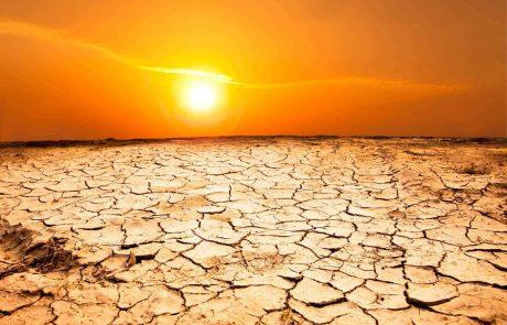 סרטן העור כמחלת מקצוע עקב חשיפה לשמש (מלנומה, BCC, SCC)